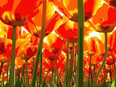 Paseo bajo los tulipanes 60x80